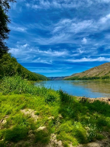 Image of Peace River by Gracie Dolen