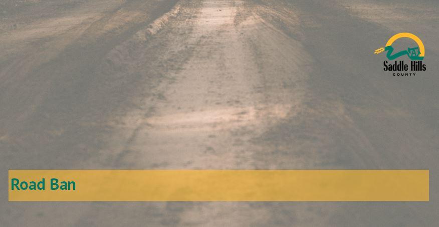 Image of Gravel Road