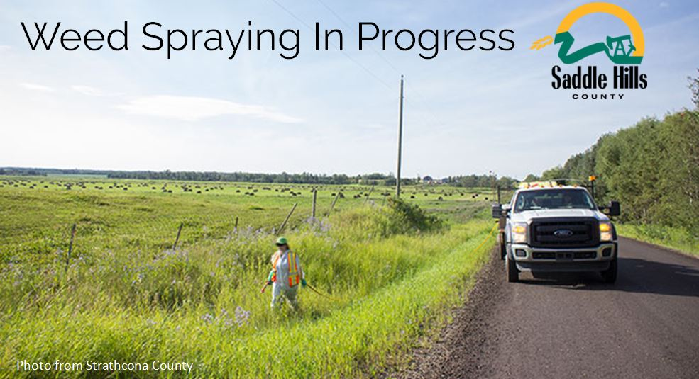 Image of weed spraying