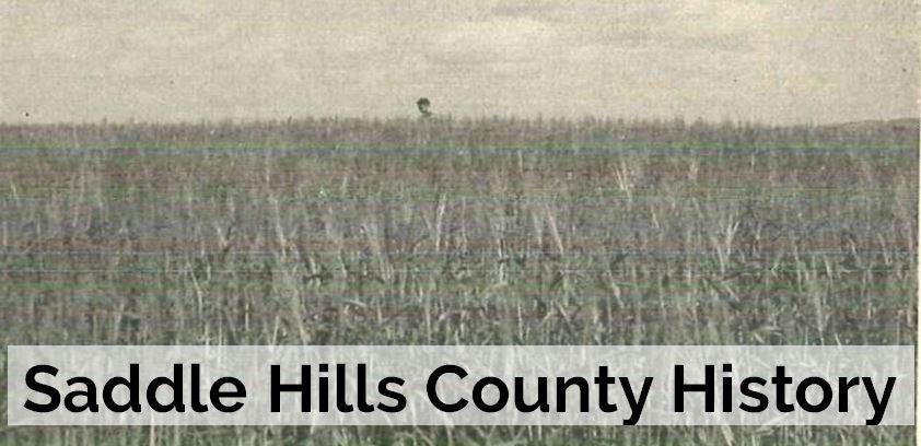 Image of field in Whitburn