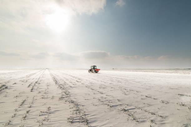 Tractor in a snowy field