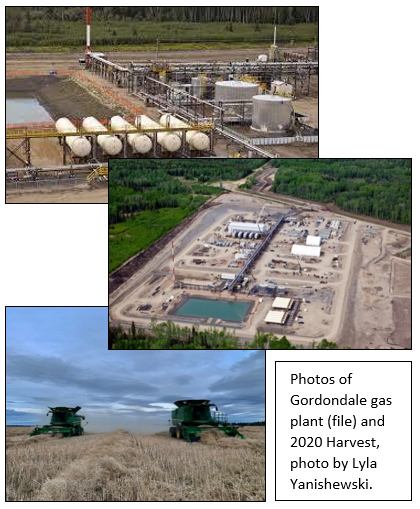 Image of Gas Plants