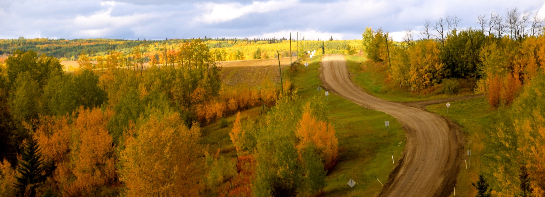 A shot of a country landscape with a nice winding dirt road.